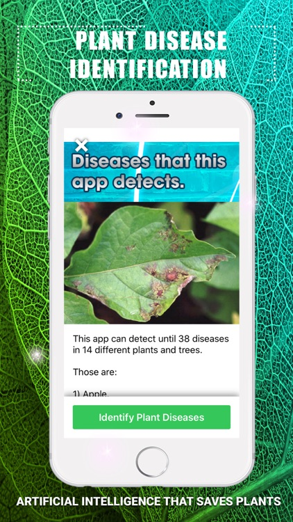 Plants Disease Identification screenshot-4