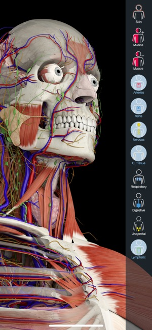essential anatomy 5 mac free download