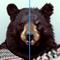 App Icon for PixelateApp App in Poland IOS App Store