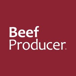 Beef Producer