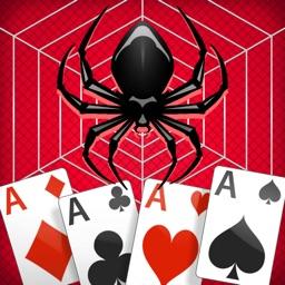 Spider Solitaire •