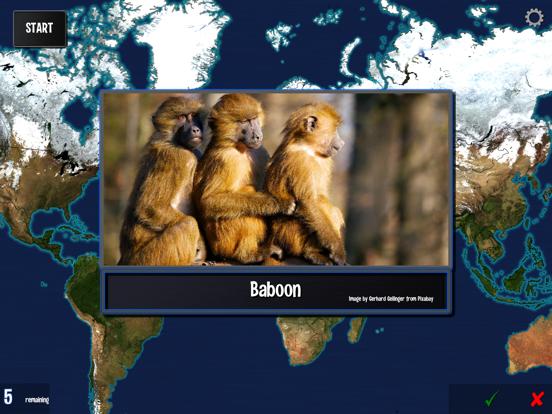 Where on Earth? screenshot #7