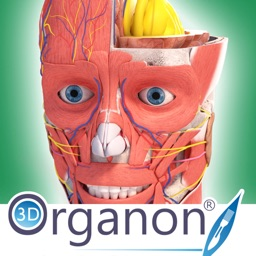 3D Organon Anatomy Enterprise