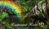 Enchanted Forest HD
