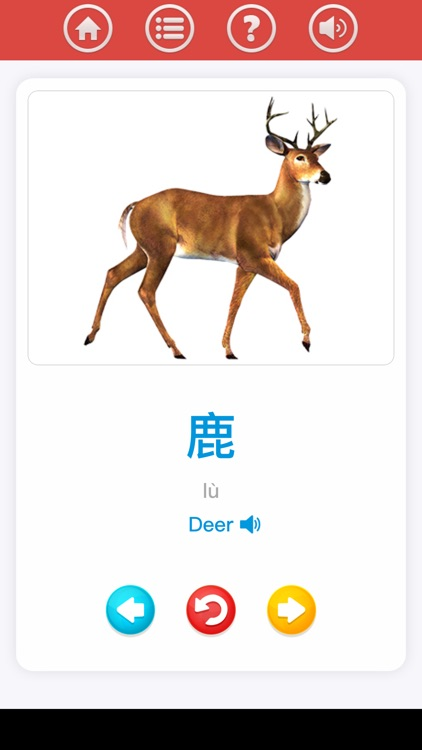 Chinese for beginner screenshot-8