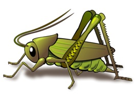 Great Insects Stickers an insects collection with great stickers for iMessage