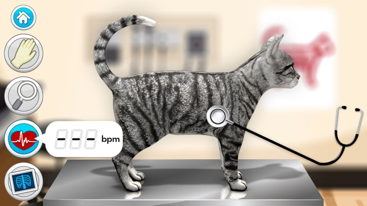 Doctor Games: Pet Vet Cat Care