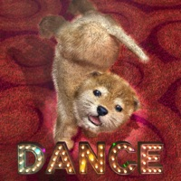Codes for Animal Dance puppies Hack