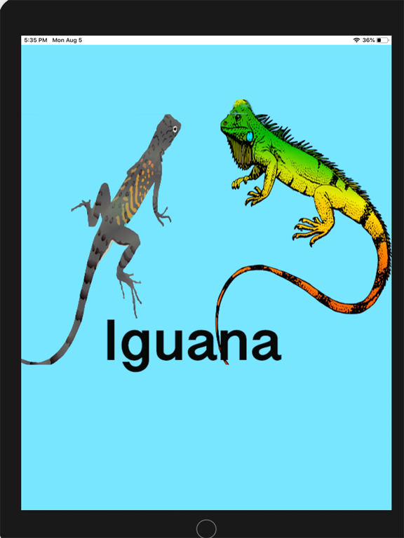 Two Iguanas screenshot 7