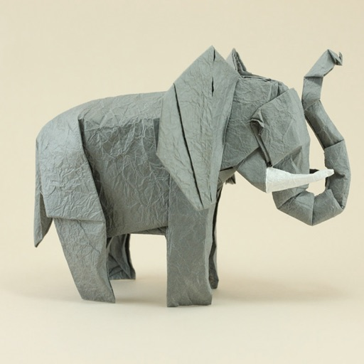 Skilled Origami