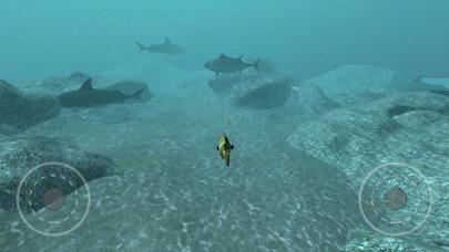 点击获取Real Fish Simulator