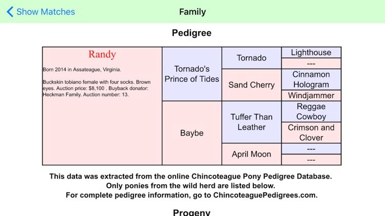 Chincoteague Pony Names screenshot-4