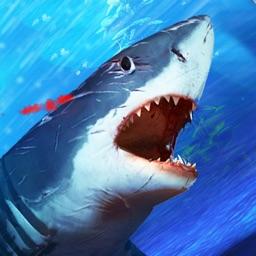 Shark Attack Angry Fish Jaws