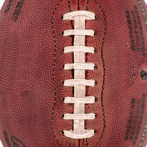 NFLadder