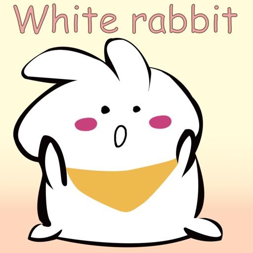 White rabbit+