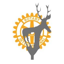 Çankaya Rotary