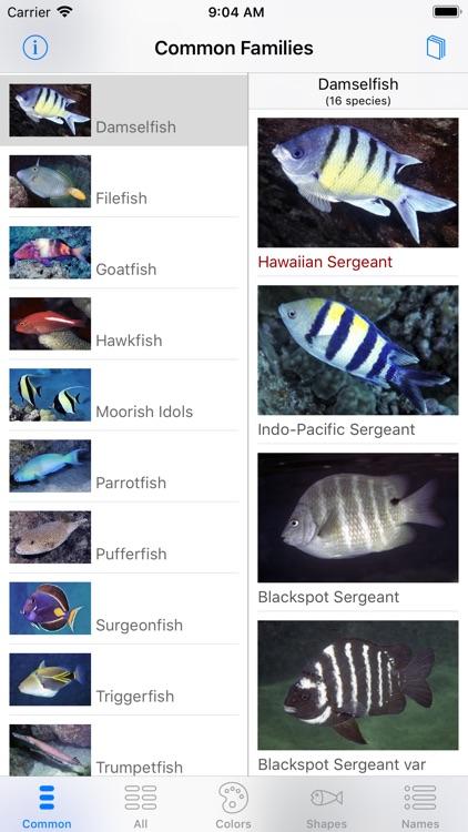 Scuba Fish Hawaii screenshot-6