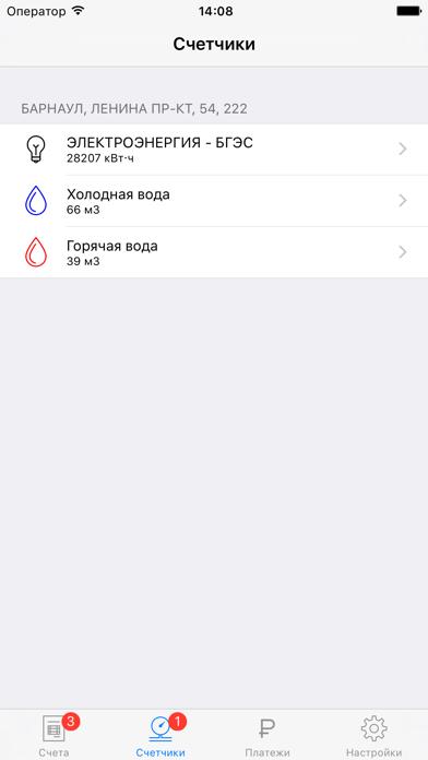 Система Город - Алтайский крайСкриншоты 4