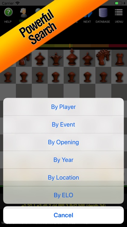 Chess Pro - Ultimate Edition screenshot-6