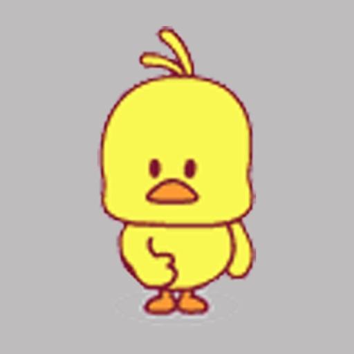 Dynamic little yellow chicken