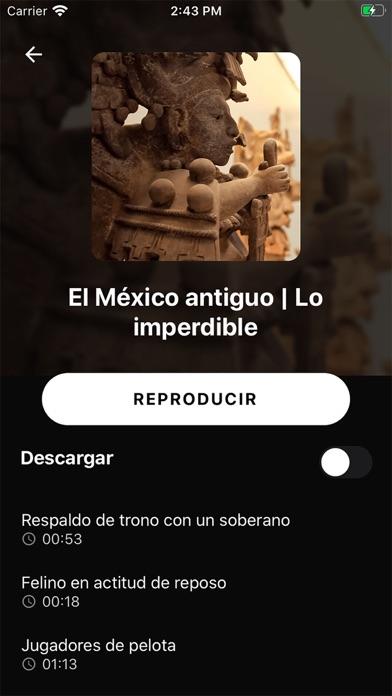 点击获取Museo Amparo Plus