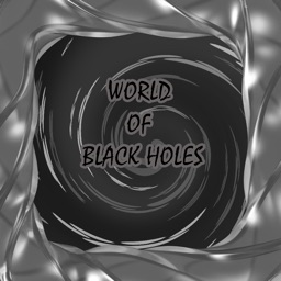 World of Black Holes