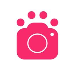 Dog Selfie Camera - Delfie