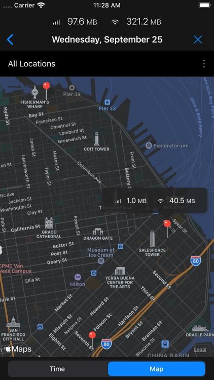 DataMan - track data usage screenshot-4