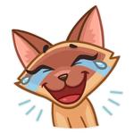 Kitty Cat Emoji Funny Stickers