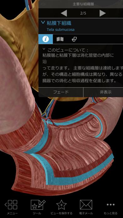 生理学と病理学 screenshot1