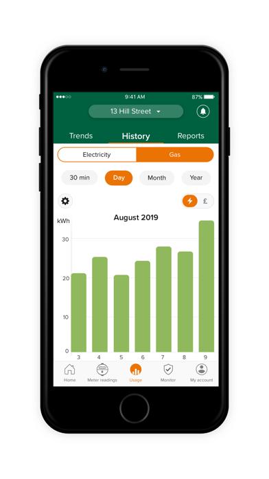 Green Network Energy screenshot four
