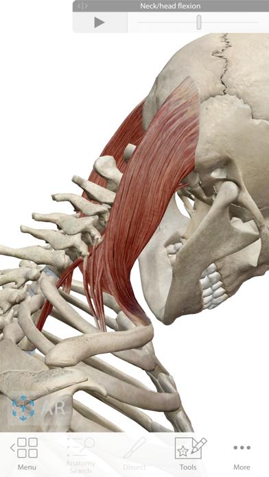 human anatomy atlas 2018 apk indir