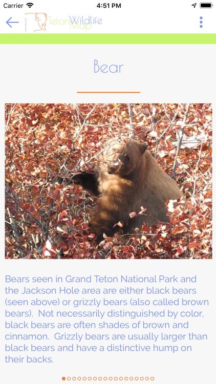 Teton Wildlife Map screenshot-3