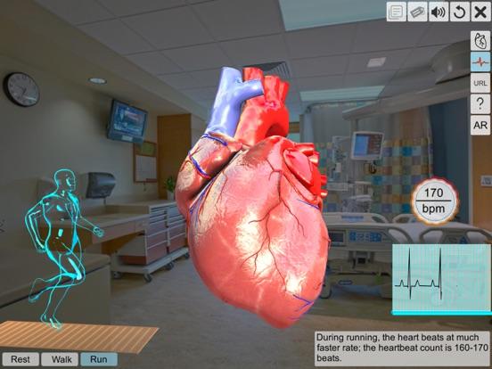 AR Human heart – A glimpse screenshot 8