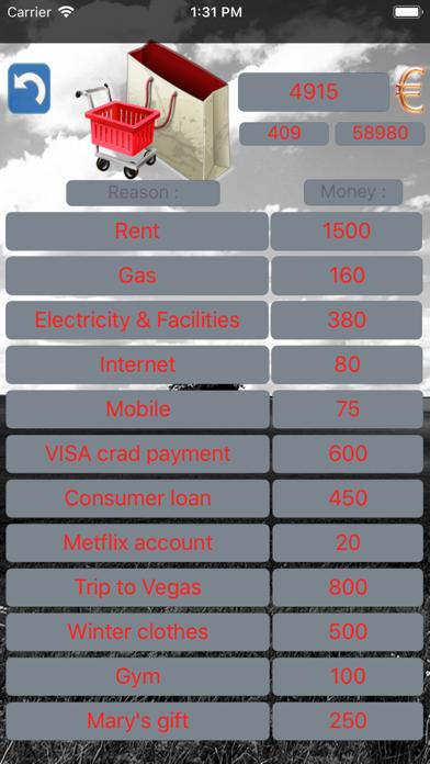 Budget Flow - Expenses, Income Screenshots