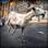 Frenzy Goat: Simulateur Chèvre