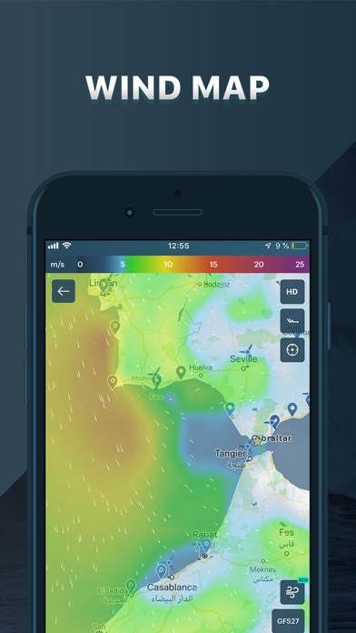 Windy: wind & weather forecast Screenshot