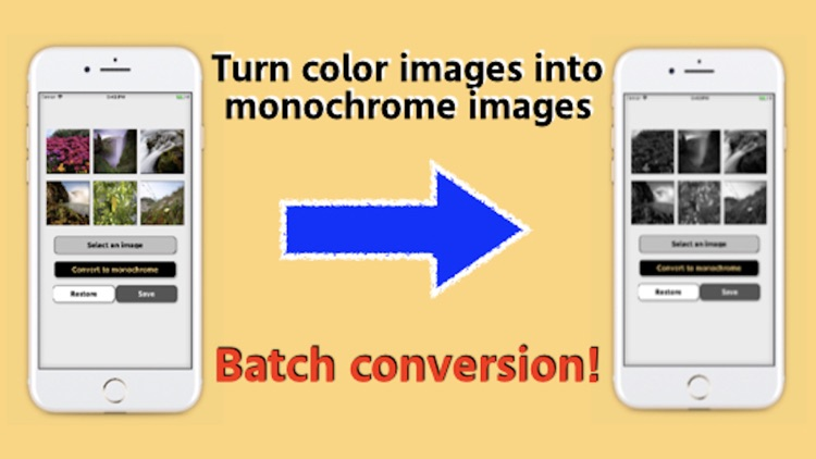 Convert images to monochrome