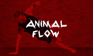 Animal Flow OnDemand