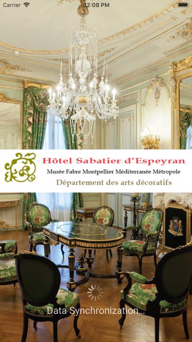 Hôtel Sabatier d'Espeyran screenshot 1
