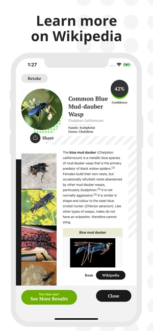 Insect Identification on the App Store