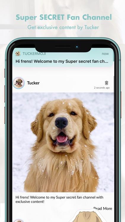 TuckerMoji - Tucker Budzyn Dog screenshot-5