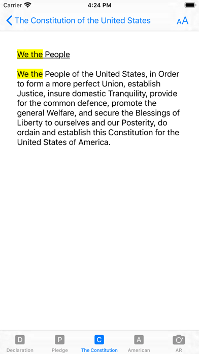 our Constitution screenshot 8