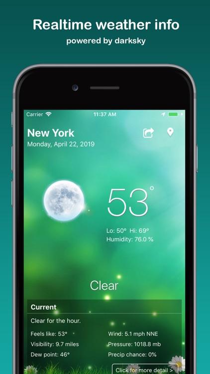 Weather: Weather Widget