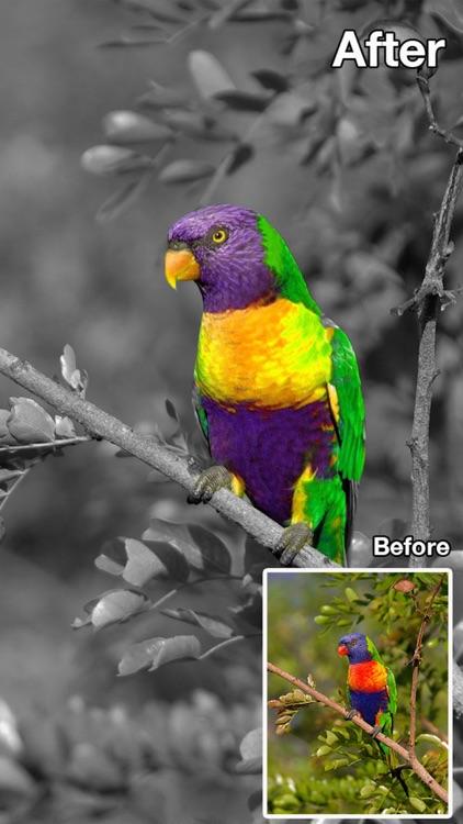 Color Changer-Coloring Editor screenshot-4