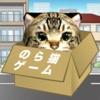 のら猫サバイバル