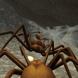 Spider Colony Simulator