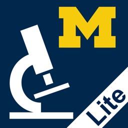 Histology Lite - SecondLook