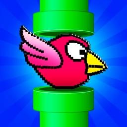Smash Fun Birds 3 - cool game