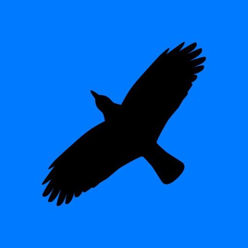 Condor Operations - Blue